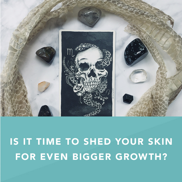 Is it Time to Shed Your Skin for Even Bigger Growth?
